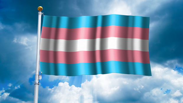 What does the Gender Identity Law establish in Chile?