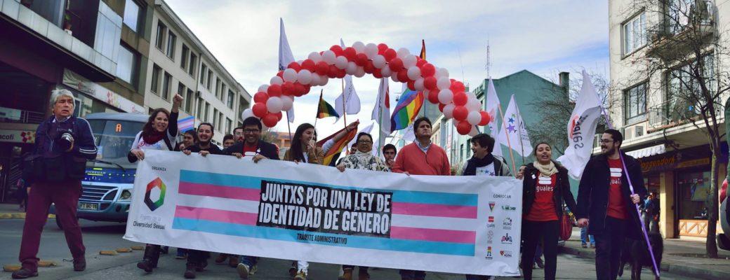 Marcha Del Orgullo 2015 Exigió Ley De Identidad De Género
