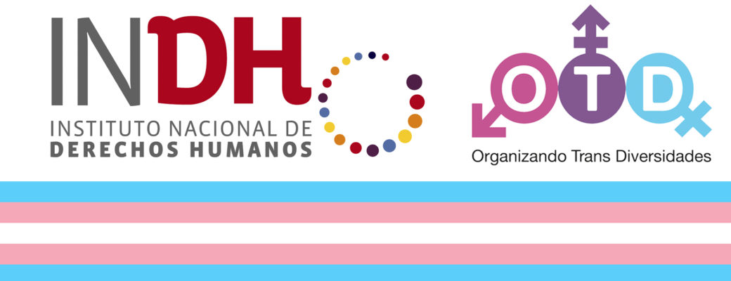 INDH Reconoce Que Patologización A Personas Trans Es Discriminación