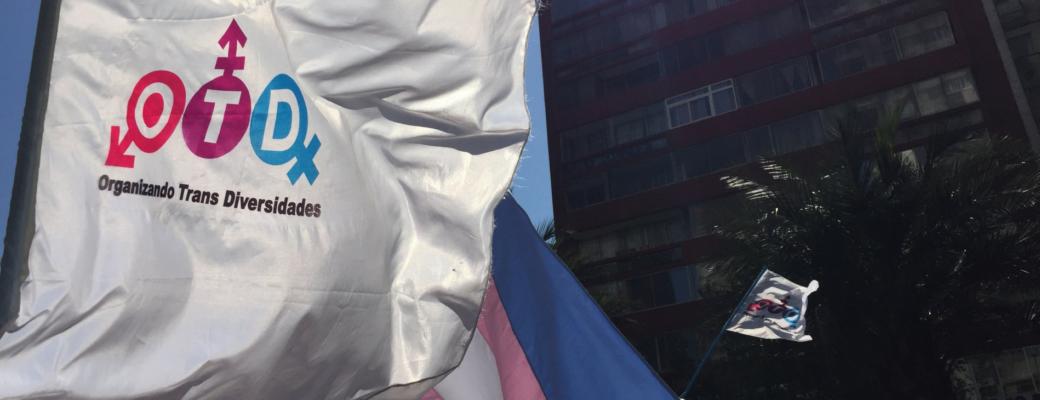 El Reconocimiento Del Derecho A La Identidad De Género: La Necesidad De Una Regulación Integral.