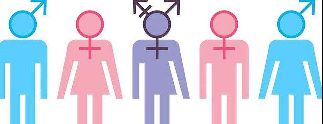 EL DESCONCIERTO: Más Allá Del Miedo Y La Soledad: La Disputa Por La Identidad De Género En Las Familias Con Niñez Trans
