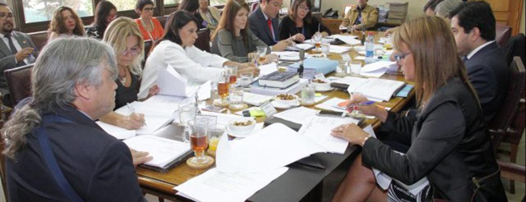 Comisión De Derechos Humanos, Nacionalidad Y Ciudadanía Del Senado Continúa Con El Análisis De Las Indicaciones Presentadas Al Proyecto De Ley De Identidad De Género