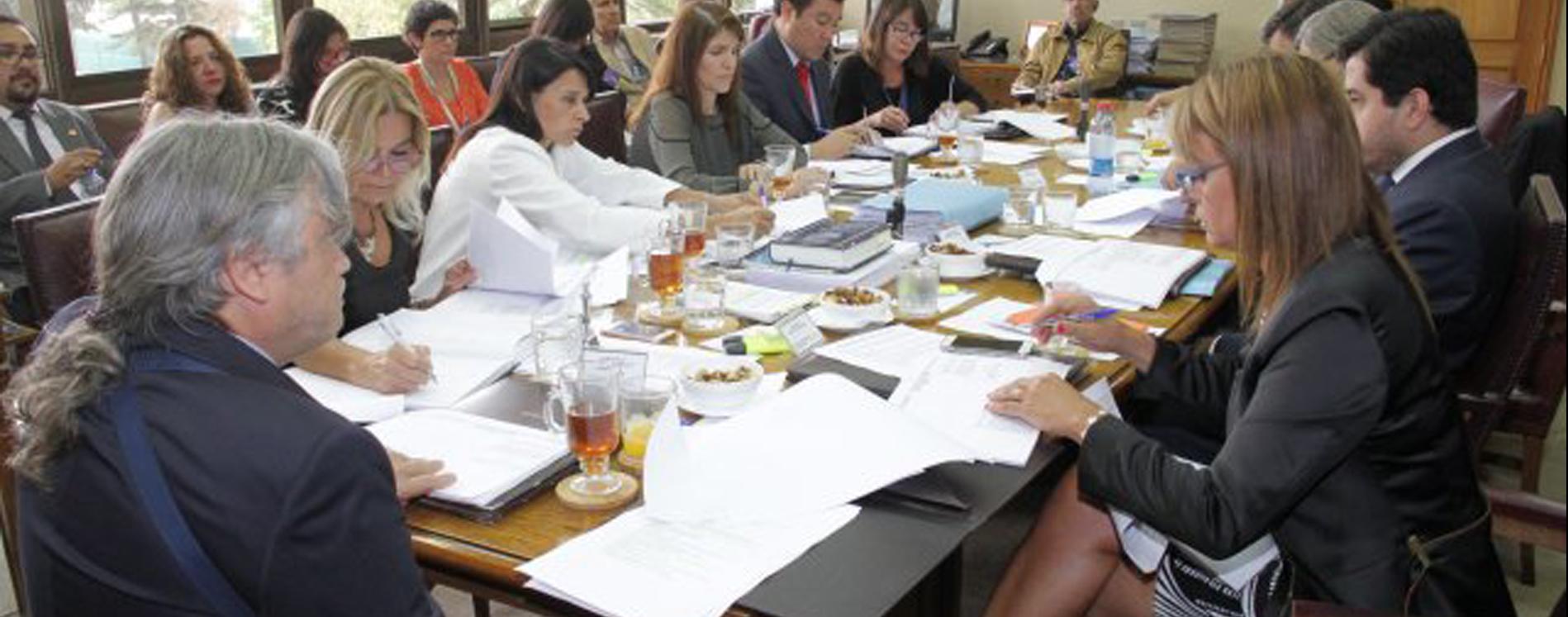Resultado de imagen para comision de derechos humanos del senado chile