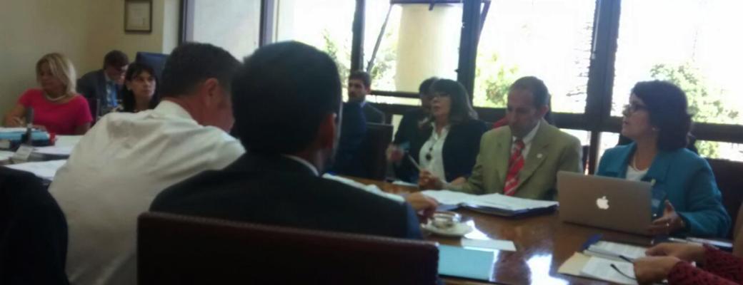 Comisión De DDHH Del Senado Aprueba Indicación Que Permitiría A Terceros Oponerse A Solicitud De Cambio De Nombre Y Sexo Registral.