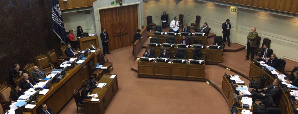 Senado Continúa La Votación Del Proyecto De Ley De Identidad De Género