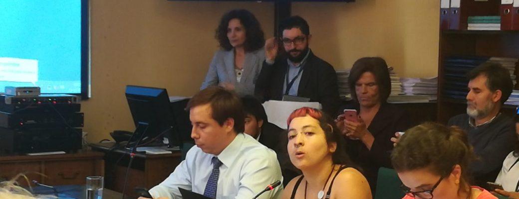 Directora De Encuesta T Expuso Ante Diputades Por Ley De Identidad De Género