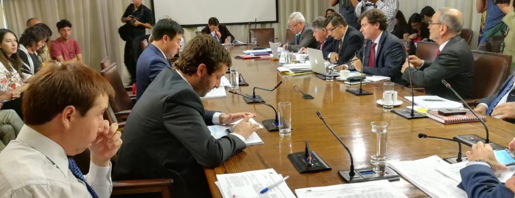 """Comisión De DDHH De La Cámara Aprueba Indicación De Protección A La """"expresión De Género"""""""