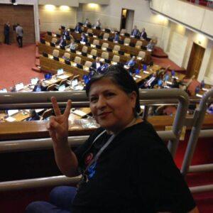 Jimena Norambuena, secreataria de OTD Chile
