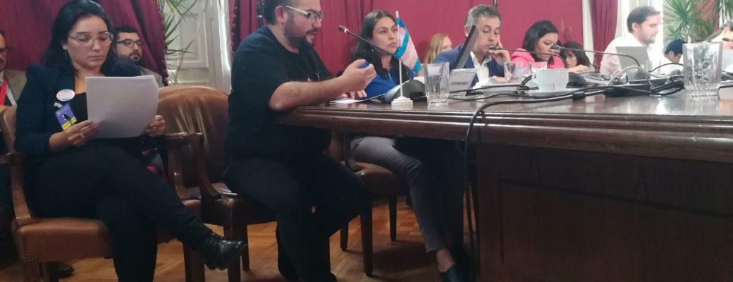 OTD Chile Expuso Ante La Comisión Mixta De La Ley De Identidad De Género