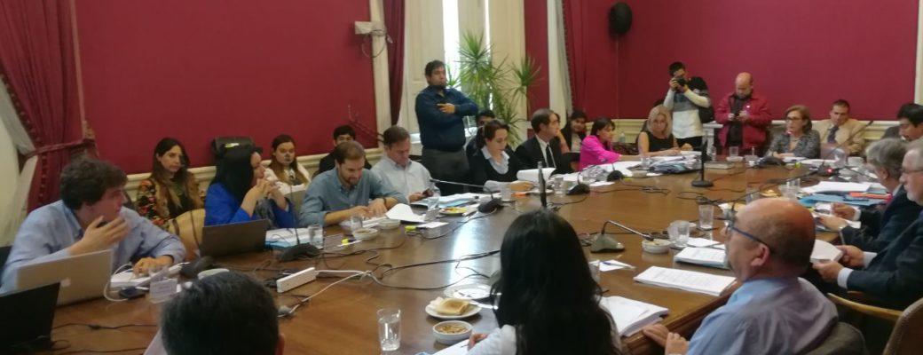 Comisión Mixta De Ley De Identidad De Género Recibió 199 Indicaciones Para Discutir