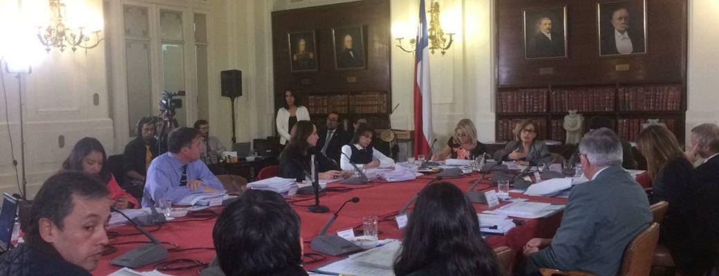Comisión Mixta Aprueba Inclusión De Todes En La Ley De Identidad De Género
