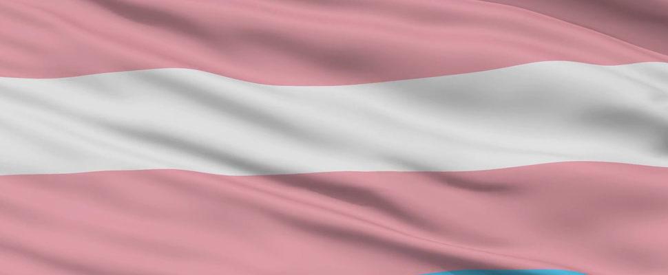 ¿No Binario? ¿Intersexo? 11 Estados De Estados Unidos Emiten IDs De Tercer Género