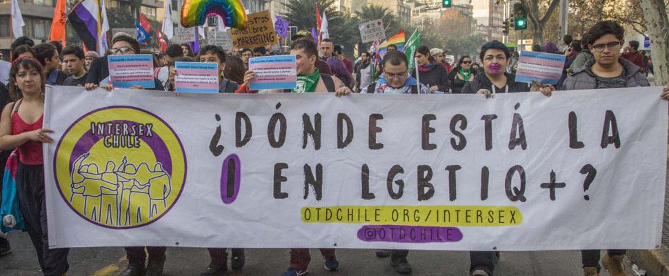 ¿Dónde Está La I En LGBTIQ? Asociación Impulsa Proyecto De Personas Intersex