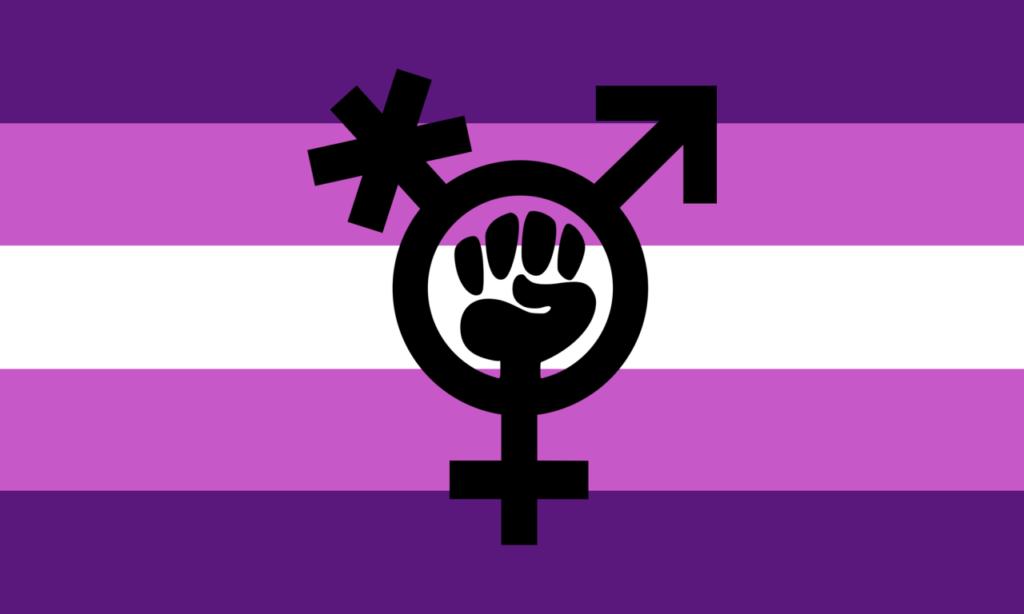 Logo Tranfeminismo