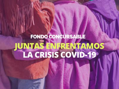 Organizaciones De Mujeres De Todo Chile Se Adjudican Fondo Concursable Juntas Enfrentamos La Crisis Covid-19