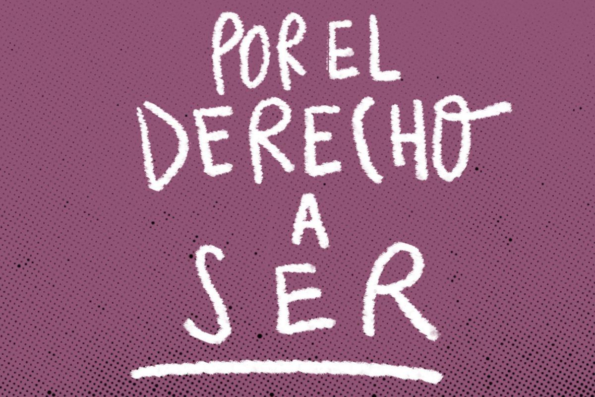 dESPATOLOGIZACION DE LAS IDENTIDADES TRANS OTD CHILE